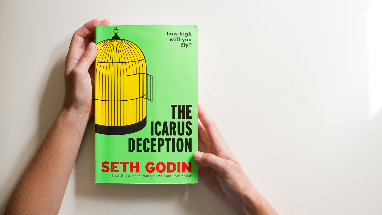 gallery_idealust icarus-deception-summary-creative-entrepreneurs-seth godin-tips-for-entrepreneurs-1
