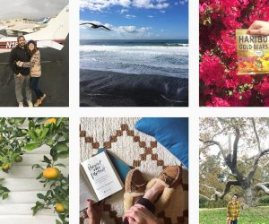 Business vs. Personal Instagram Accounts + How to Decide What's Right for You